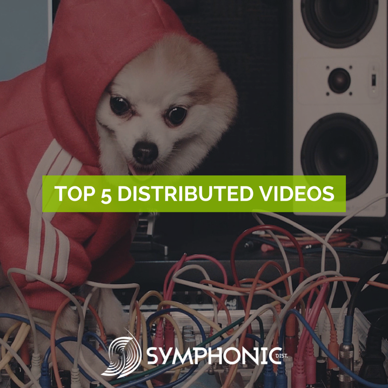 top distributed videos